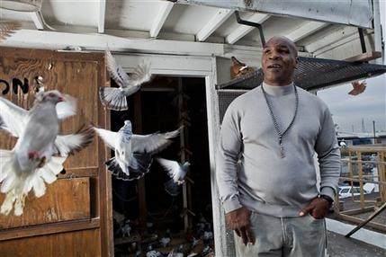 03-mike-tyson-pigeons