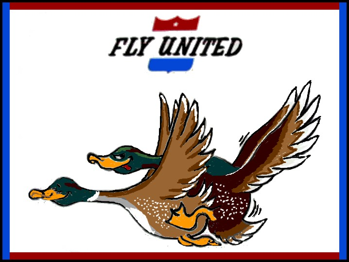 02-fly-united
