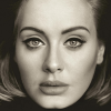 02-Adele-Face.png