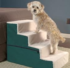 05-dog-stairs