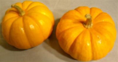 02-mini-pumpkins