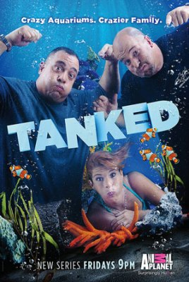 12-tanked