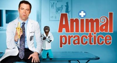 02-animal-practice
