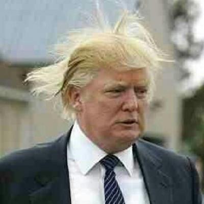 04-trump-hair