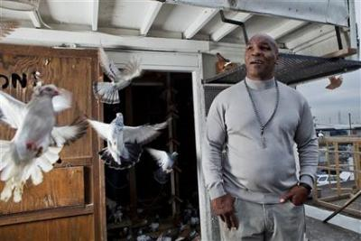 01-mike-tyson-pigeons