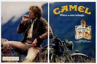 01-camel1