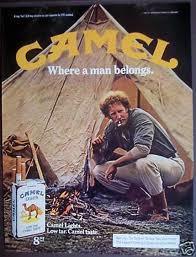 07-camel7