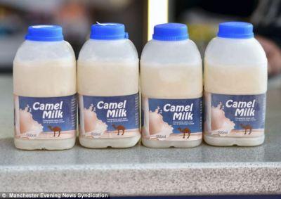 03-camel-milk