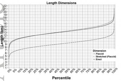 04-average-penis-size