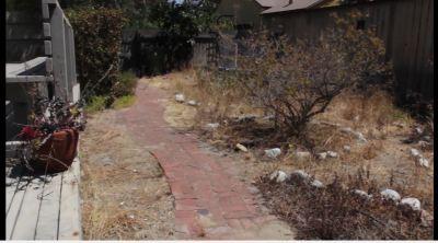 07-Adams-old-backyard.JPG