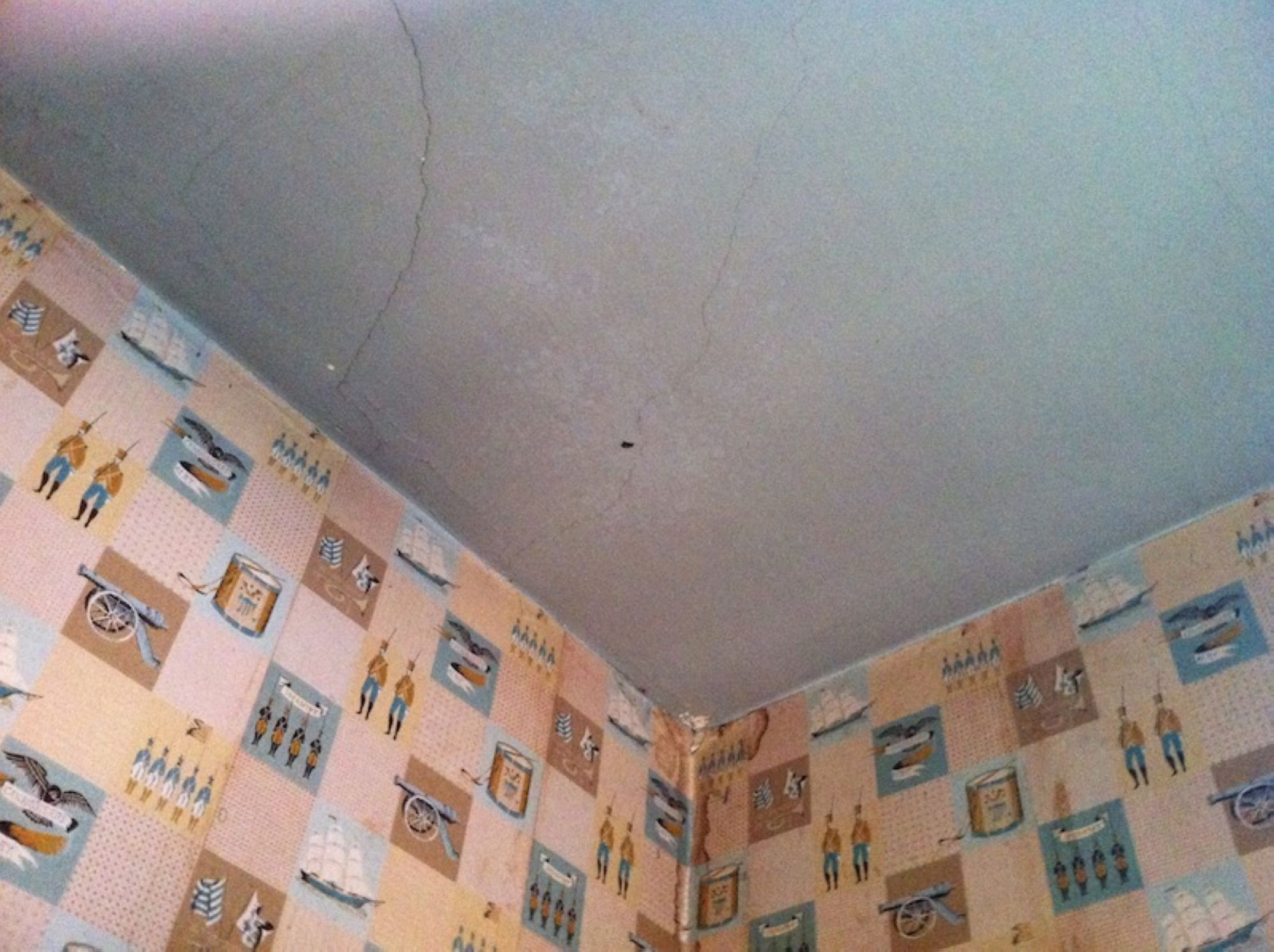 02-Fruit-Roll-Up-Ceiling_1.jpg