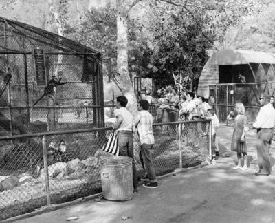 10-Old-LA-Zoo-1