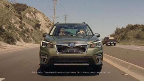 01 - Subaru Dog Commercial Tested Screenshot
