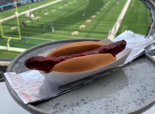 02 - SoFi Hot Dog