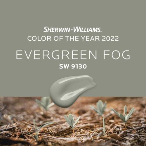 09 - NEWS - Color of the year 2022